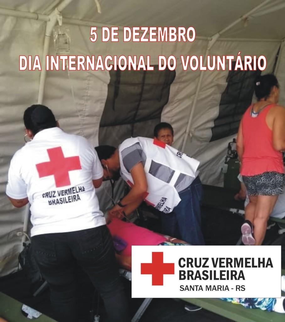 dia voluntário